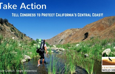 Tell Congress to Protect California's Central Coast!
